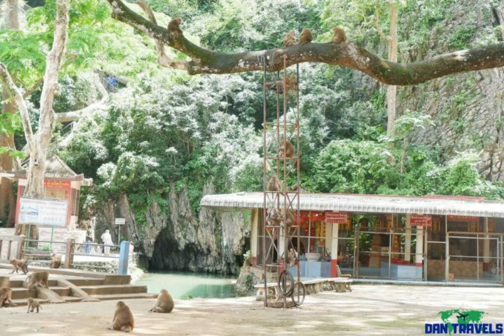Monkey Cave in Chiang Rai